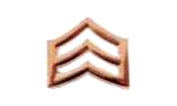 Sergeant Collar Pin - PAIR